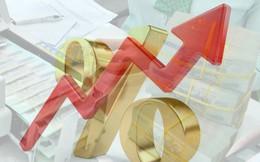 Chuyên gia kinh tế trưởng BIDV: 2019 rủi ro lãi suất tăng, doanh nghiệp khó huy động vốn trung dài hạn