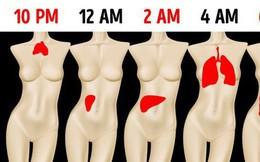 Thường tỉnh giấc vào khung giờ này trong đêm, bạn biết ngay gan, phổi, mật... đang hỏng