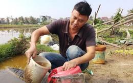 Vụ hàng nghìn lít dầu tràn ở Thanh Hóa: Dân làng đổ xô mang can ra hớt dầu