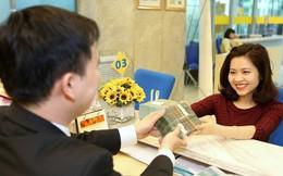 Hệ thống ngân hàng Việt Nam nhiều cải thiện trong 2018