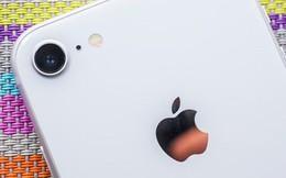 Thua kiện Qualcomm, Apple bị cấm bán điện thoại iPhone ở Đức
