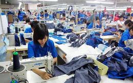 Vào 'cuộc chơi' CPTPP: Doanh nghiệp Việt lo diễn biến khó lường