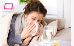 Phân biệt viêm phổi và viêm phế quản - 2 bệnh viêm nhiễm gây ảnh hưởng tới đường thở