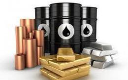 Thị trường ngày 30/1/2019: Dầu tăng trở lại, vàng cao nhất hơn 8 tháng