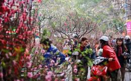 Cán bộ, công chức, người lao động TPHCM được nghỉ 9 ngày dịp Tết Nguyên đán Kỷ Hợi 2019