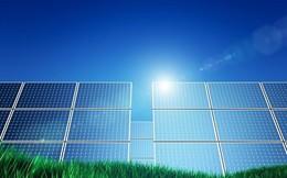 Bình Định thu hồi dự án điện mặt trời của Tập đoàn Ấn Độ