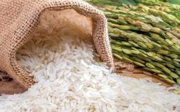 Philippines chưa áp thuế bổ sung đối với gạo nhập khẩu