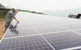 """Hóng giá điện mặt trời, nhà đầu tư """"mất ăn mất ngủ"""""""
