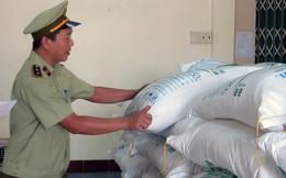 Tạm giữ 30 tấn đường không rõ nguồn gốc