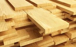 Mỹ là thị trường xuất khẩu gỗ và sản phẩm gỗ lớn nhất trong 10 tháng năm 2019