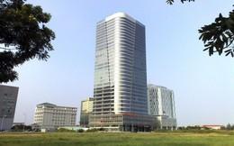 Cơ cấu cổ đông Petroland biến động lớn