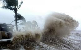 Bão KAMMURI giật cấp 14 đang hướng vào Biển Đông
