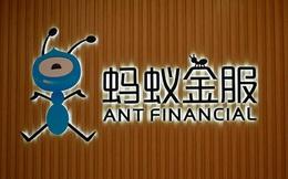 Alibaba vừa lặng lẽ mua lượng cổ phần lớn của 1 ví điện tử ở Việt Nam?