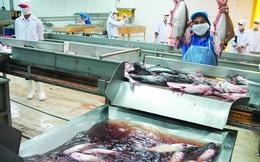 Một năm vui buồn của xuất khẩu cá tra