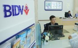 BIDV siết khoản nợ nghìn tỷ ở An Giang