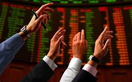 Sau Phó TGĐ, đến lượt TGĐ Ocean Group (OGC) đăng ký mua 2 triệu cổ phiếu