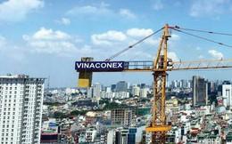 Vượt 29% kế hoạch lợi nhuận, Vinaconex (VCG) dự chi hơn 440 tỷ đồng tạm ứng cổ tức năm 2018