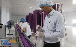 """Ước mơ của một giám đốc với sản phẩm """"cứu thế giới"""", thay thế ống hút nhựa đang huỷ hoại môi trường"""