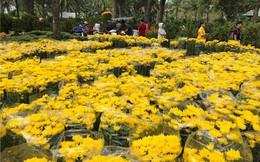 Chợ hoa Tết lớn nhất Sài Gòn nhộn nhịp ngày cuối năm