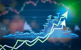 """BSC i-Invest: Để nhà đầu tư không còn là """"nhà đầu cơ"""""""