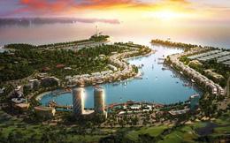 P.Land hợp tác với Chủ đầu tư phân phối dự án Tuần Châu Marina