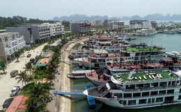 5 điểm nổi bật của Tuần Châu Marina