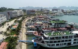 Tuần Châu Marina – Xu hướng đầu tư mini hotel tại Hạ Long