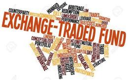 VNM ETF và FTSE Vietnam ETF sẽ mua, bán ra sao trong tuần cơ cấu danh mục?