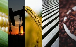Thị trường ngày 19/4: Dầu thô hồi phục, ethanol tăng vọt 18% lên mức cao kỷ lục, sữa tăng phiên thứ 10 liên tiếp