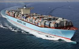 Cục diện 'như một sòng bạc' của ngành vận tải container đường biển