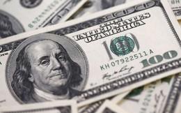 New York Times: Mặt hàng xuất khẩu mang về lợi nhuận cao nhất cho nước Mỹ là gì?
