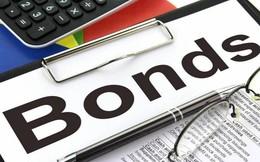 Tài chính Hoàng Huy (TCH) đã phát hành gần 600 tỷ đồng trái phiếu chuyển đổi cho Shinhan Bank và Shinhan Core Trend Global