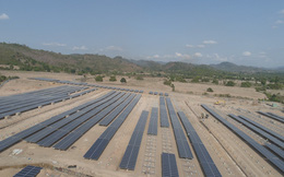 Dồn dập đầu tư vào ngành năng lượng tái tạo, Licogi 16 suy tính điều gì?