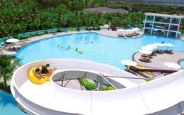 Từ chuyện Crystal Bay Hospitality: Hành trình vươn biển lớn của những thương hiệu khách sạn Việt
