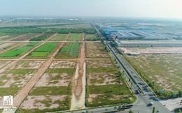 Lùm xùm bán đấu giá dự án nghìn tỷ ở Bình Dương giữa Kim Oanh, Agribank Chợ Lớn và Công ty đấu giá Nam Sài Gòn, Chủ đầu tư khởi kiện