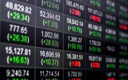 VNM ETF nâng tỷ trọng cổ phiếu Việt Nam thêm 1,18% trong đợt review quý 1/2019