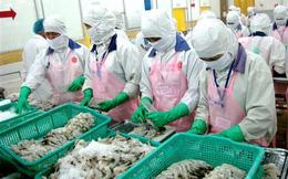 Xuất khẩu tôm sang Canada: Giàu tiềm năng, nhiều cơ hội