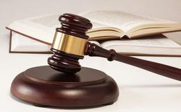 Tiêu điểm xử phạt tuần qua: Hàng loạt doanh nghiệp bị UBCKNN phạt nặng