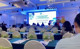 ĐHĐCĐ Bamboo Capital: Giám đốc Điều hành Vinamilk ứng cử Thành viên HĐQT độc lập, kỳ vọng đóng góp cho mảng năng lượng tái tạo