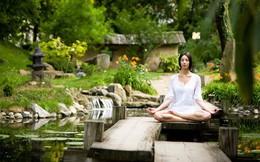 5 bước thiền định để giải tỏa mọi căng thẳng trong cuộc sống: Luyện tập đúng cách để tìm lại sự an trú trong tâm, sức khỏe không ngừng tăng lên