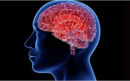 Hãy cẩn thận với những triệu chứng thông thường này, chúng có thể là dấu hiệu sớm của bệnh Parkinson – một rối loạn cấp cao của hệ thần kinh