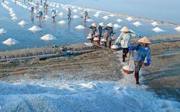 Ngành muối Việt khốn khổ vì hàng nhập khẩu và biến đổi khí hậu