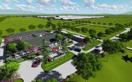 Vinamilk bắt tay với doanh nghiệp Lào, Nhật Bản, khởi công xây dựng tổ hợp resort bò sữa organic 5.000ha tại Lào