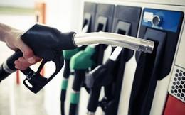 Tiếp tục nghiên cứu cắt giảm một số điều kiện đầu tư kinh doanh xăng dầu