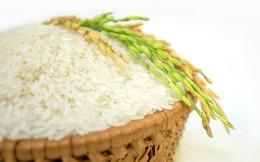 Bangladesh – áp lực mới của thị trường gạo Việt Nam và thế giới khi giảm nhập khẩu 16 lần