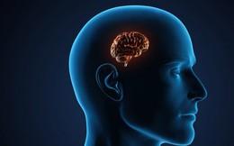 Trí nhớ ngày càng suy giảm thậm chí dẫn đến teo não là do bạn chưa bỏ được những thói xấu sau, đặc biệt là điều số 3