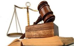 Thêm nhiều cá nhân và doanh nghiệp bị phạt nặng