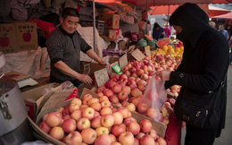 Trung Quốc: Giá táo tăng gần 30% trong hơn 1 tháng, Chính phủ lo lắng trấn an người tiêu dùng