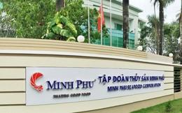Doanh thu 5 tháng của Minh Phú giảm nhẹ còn 225 triệu USD