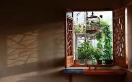 Cặp vợ chồng lập trình viên từ chối mua nhà ở thành phố, về quê xây nhà nhỏ bên khoảng sân vườn trồng rau và hoa mỗi ngày